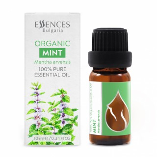 Organic Mint - 100% pure and natural essential oil (10ml)